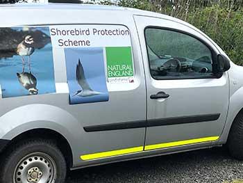 Shorebird Van.jpg